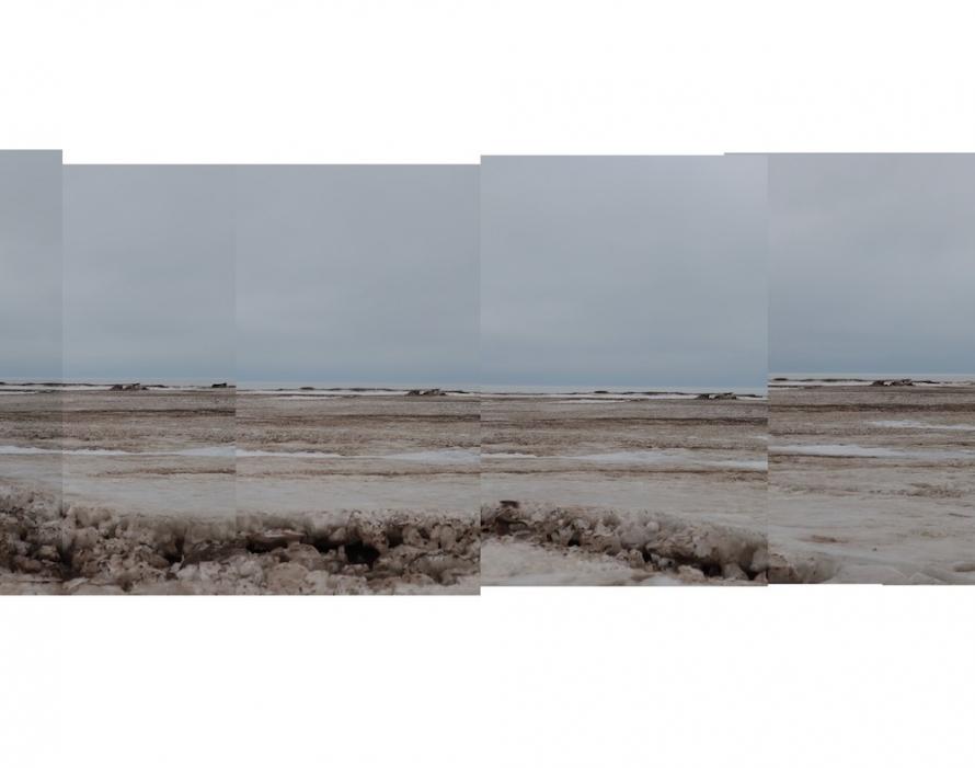 https://www.dariaprokofyeva.com/files/gimgs/th-41_50 metres copy5 copy_v2.jpg